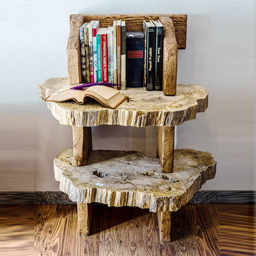 Petrified book shelf or bedside cabinet