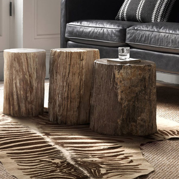 Coffee table or stools made from fossilized trunks
